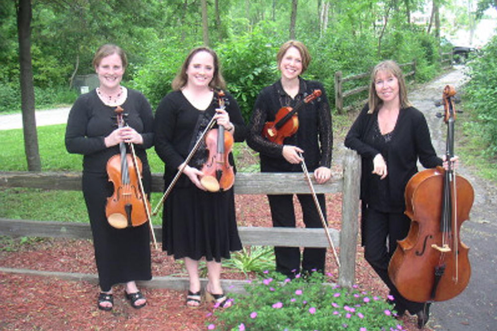 the lakeside strings